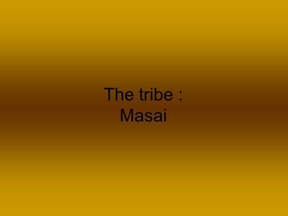 The tribe : Masai