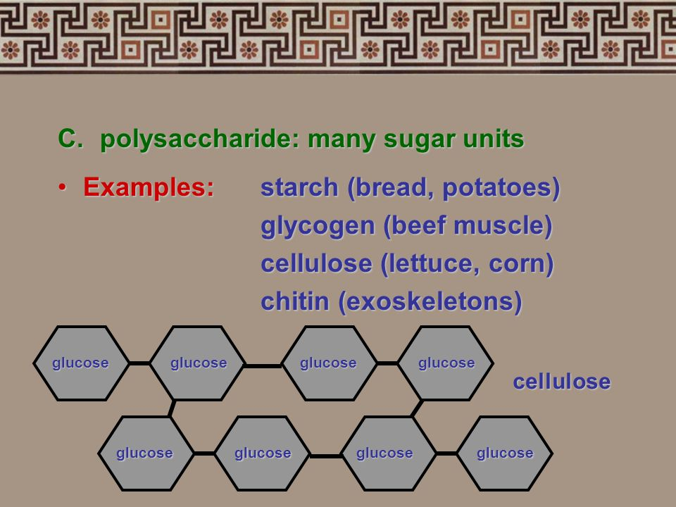 C. polysaccharide: many sugar units Examples: starch (bread, potatoes)