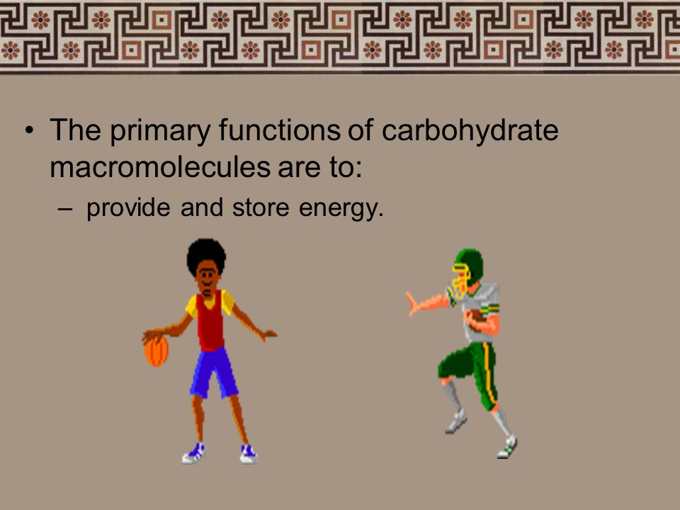 The primary functions of carbohydrate macromolecules are to: