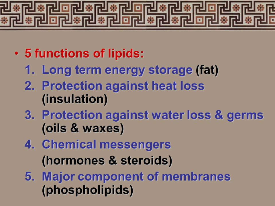 5 functions of lipids: 1. Long term energy storage (fat) 2. Protection against heat loss (insulation)