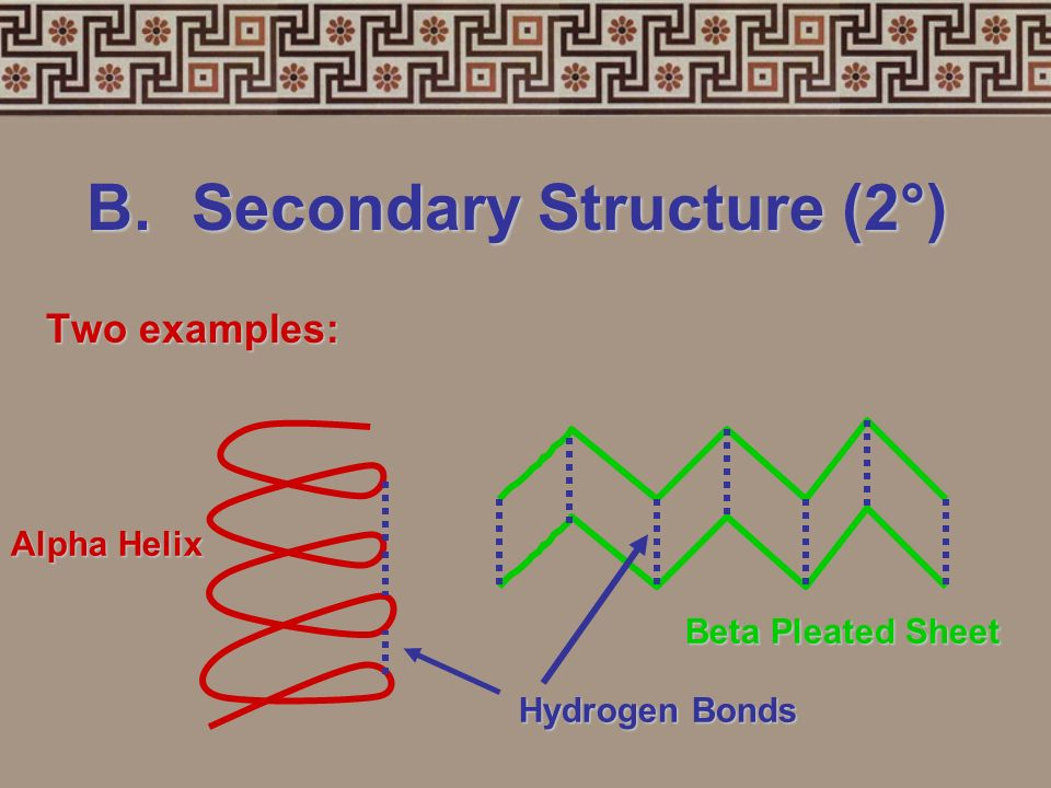 B. Secondary Structure (2°)