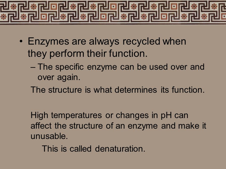 Enzymes are always recycled when they perform their function.