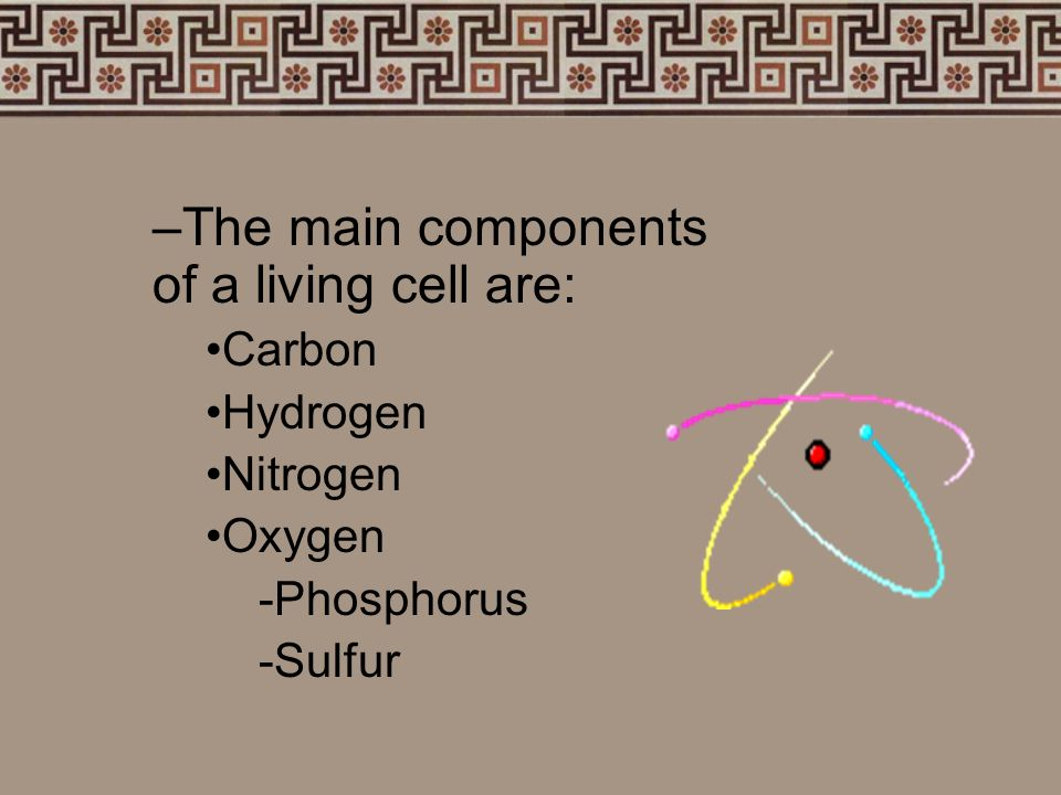 The main components of a living cell are:
