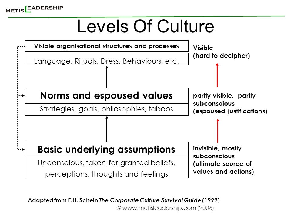 Levels Of Culture Norms and espoused values