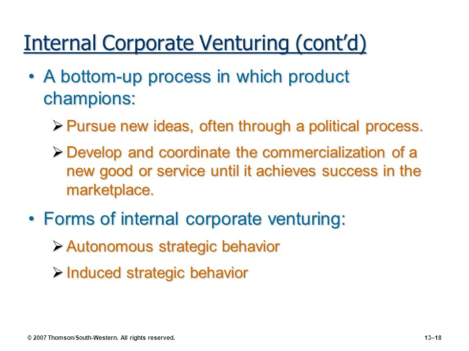 Internal Corporate Venturing (cont'd)