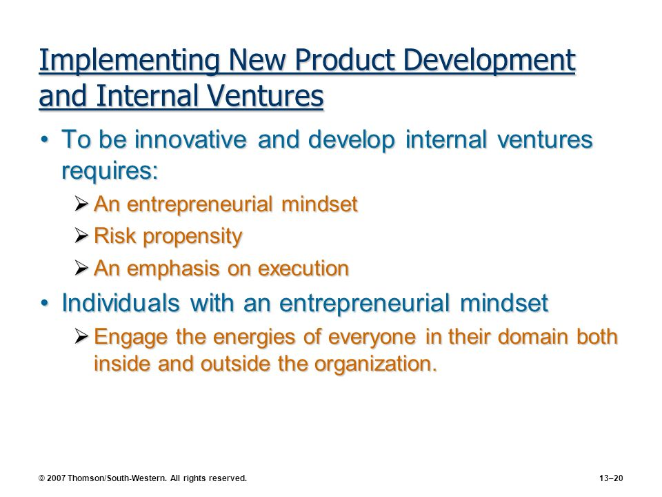 Implementing New Product Development and Internal Ventures