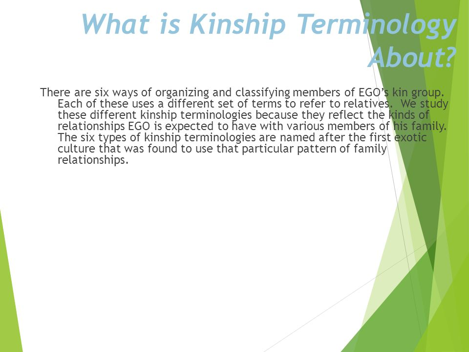 What is Kinship Terminology About