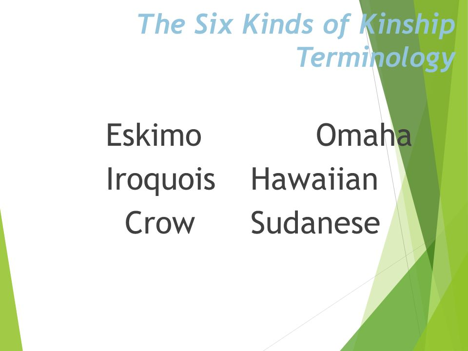 The Six Kinds of Kinship Terminology