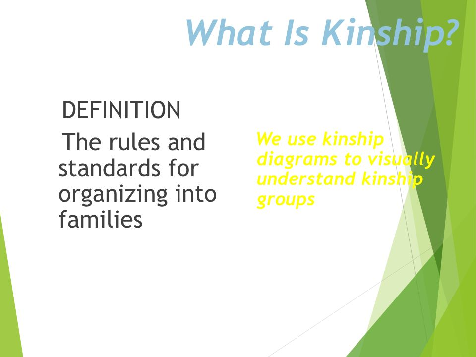 What Is Kinship.