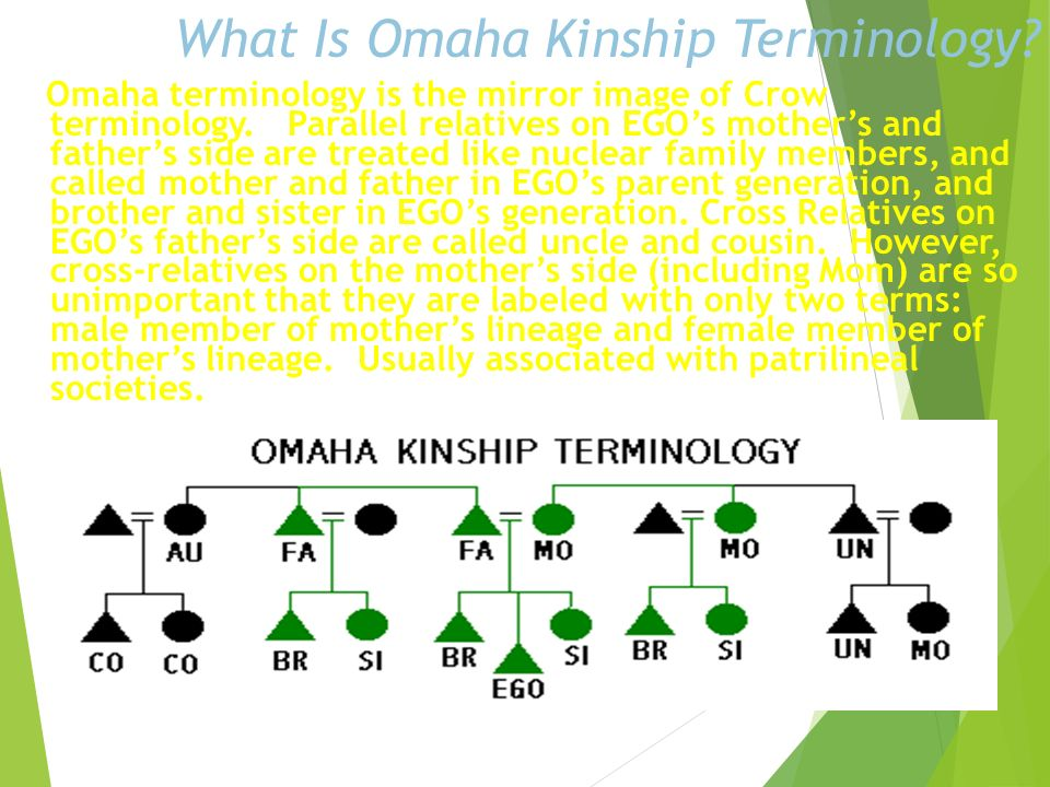 What Is Omaha Kinship Terminology