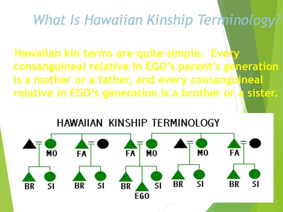 What Is Hawaiian Kinship Terminology