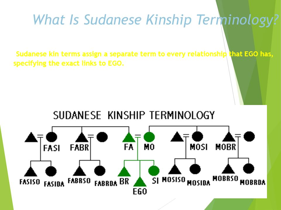 What Is Sudanese Kinship Terminology
