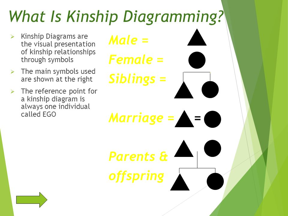 What Is Kinship Diagramming