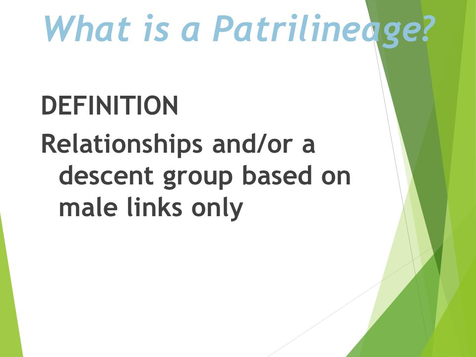 What is a Patrilineage DEFINITION Relationships and/or a descent group based on male links only