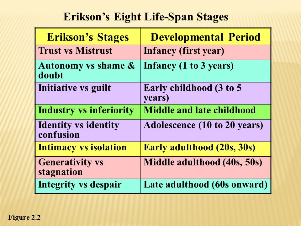 Erikson's Stages Developmental Period