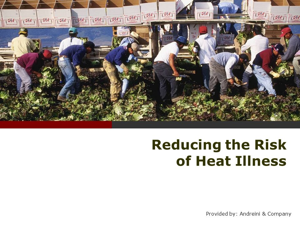 Reducing the Risk of Heat Illness
