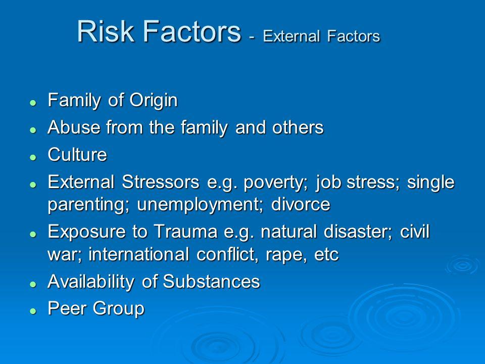 Risk Factors - External Factors