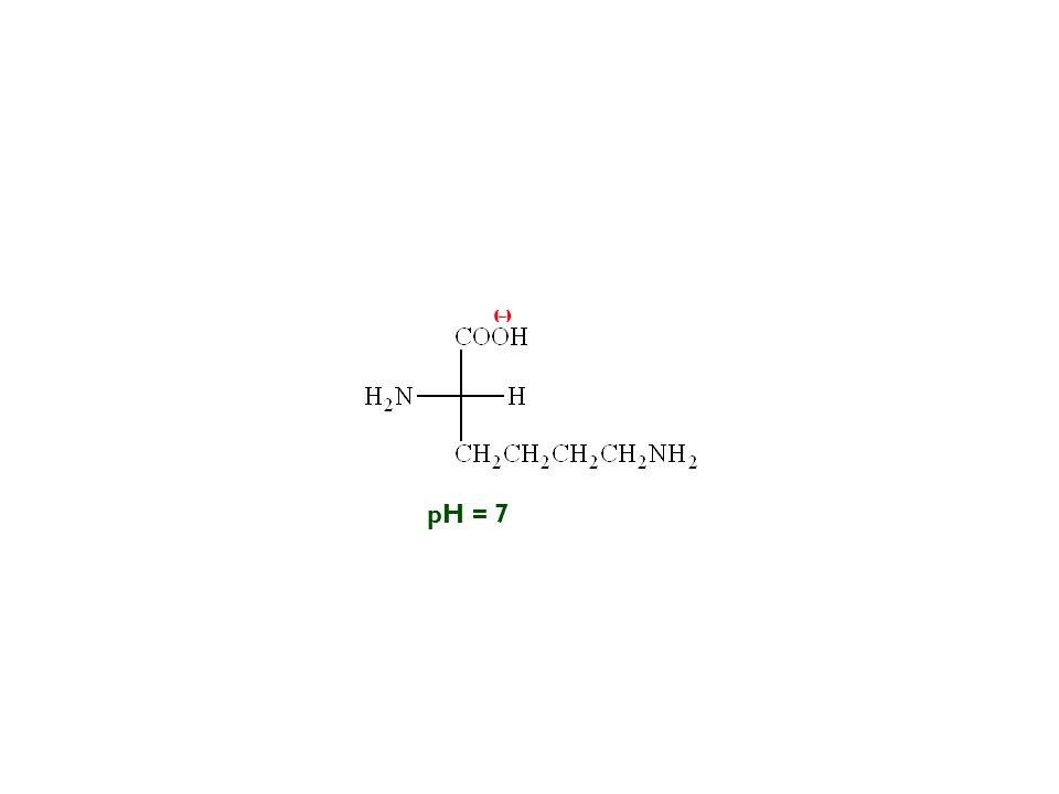 (–) pH = 7