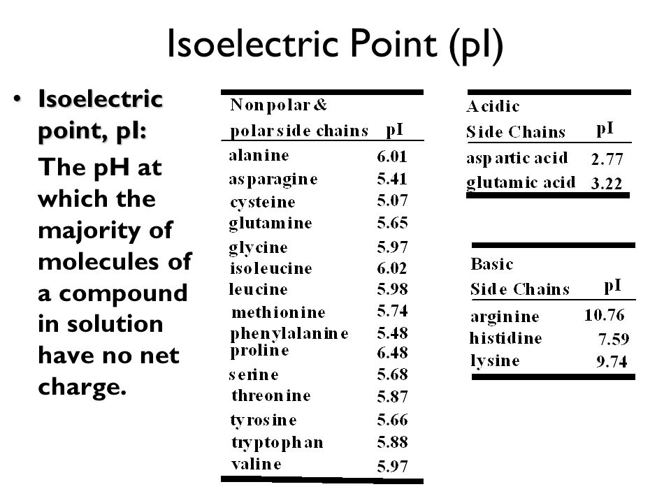 Isoelectric Point (pI)