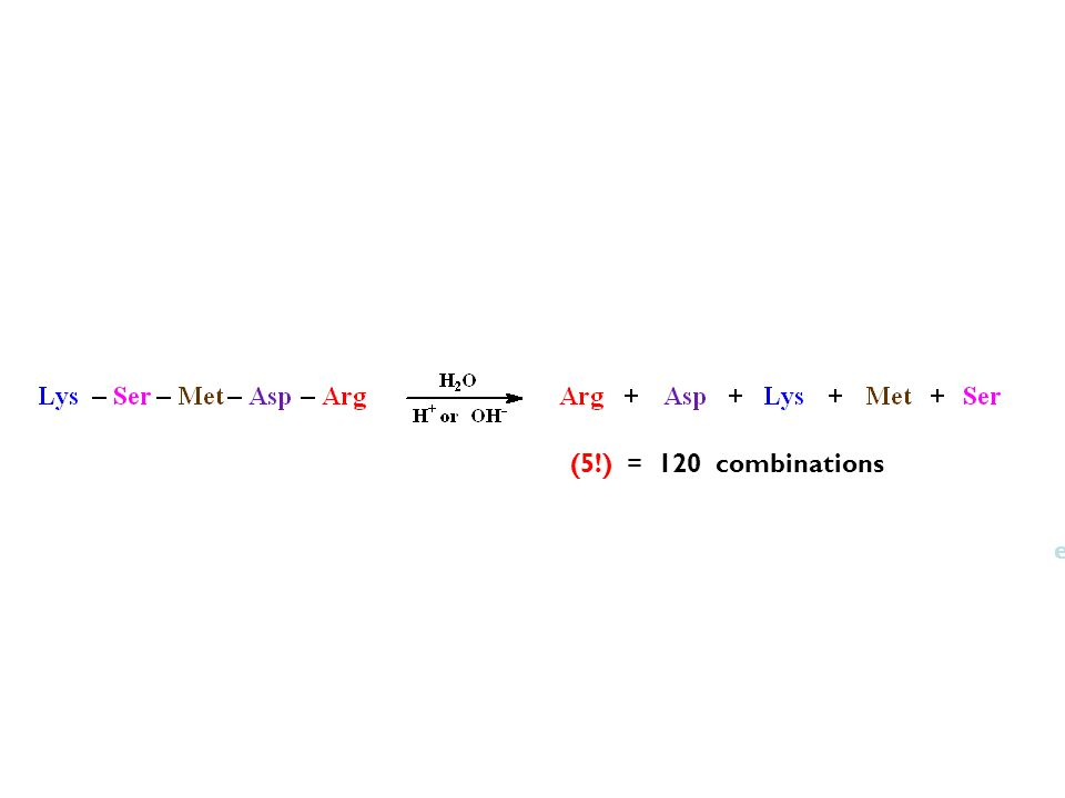 (5!) = 120 combinations (20!) = 2.4  1018 eicosapeptides.