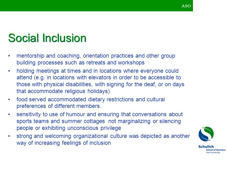 ASO Social Inclusion. mentorship and coaching, orientation practices and other group building processes such as retreats and workshops.