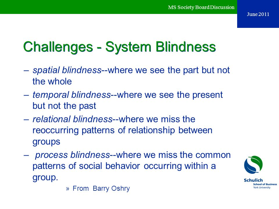 Challenges - System Blindness