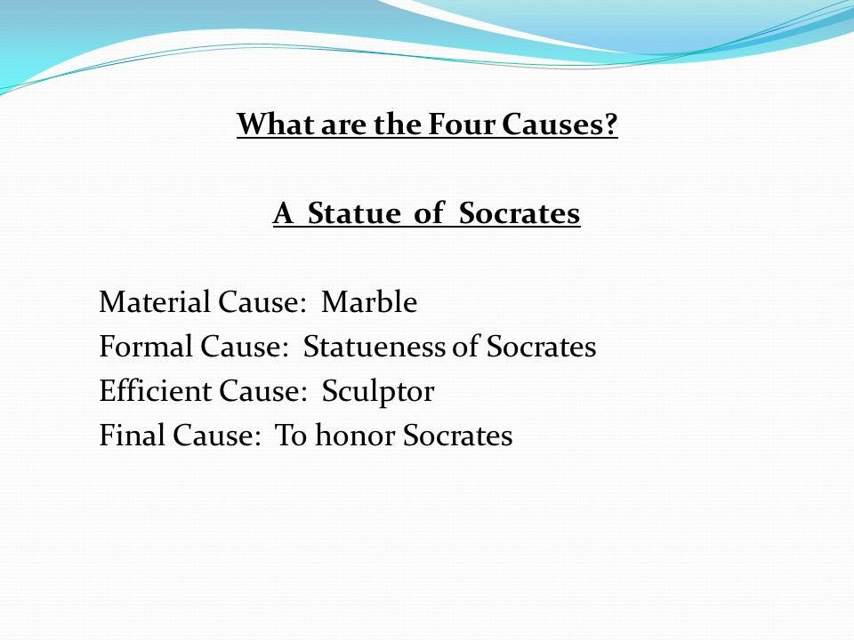 What are the Four Causes