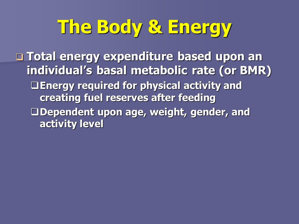 The Body & Energy Total energy expenditure based upon an individual's basal metabolic rate (or BMR)