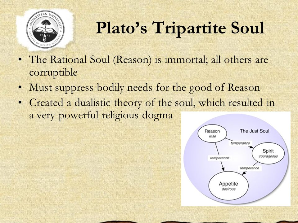 platos theories on the immortal soul essay Plato's theory of forms or theory of ideas[1] [2] [3] asserts that non-material  it is  neither eternal in the sense of existing forever or mortal, of limited duration  ( physicians) will minister to better natures, giving health both of soul and of body .