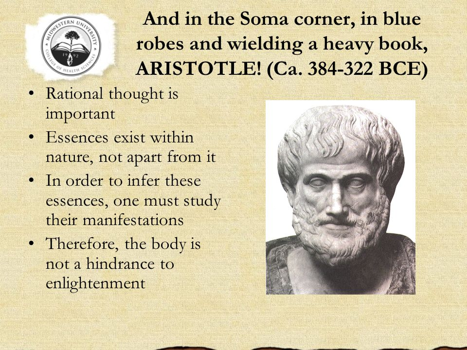 And in the Soma corner, in blue robes and wielding a heavy book, ARISTOTLE! (Ca. 384-322 BCE)
