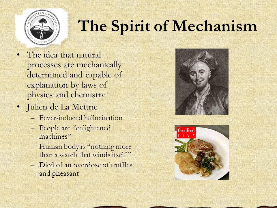 The Spirit of Mechanism