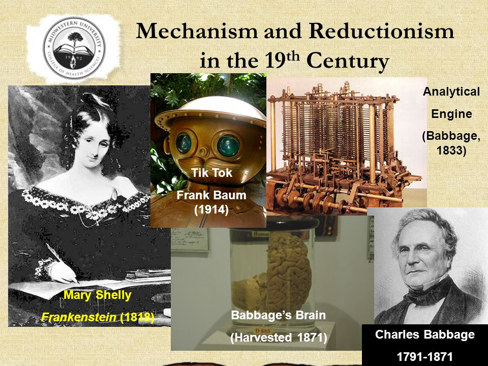 Mechanism and Reductionism in the 19th Century