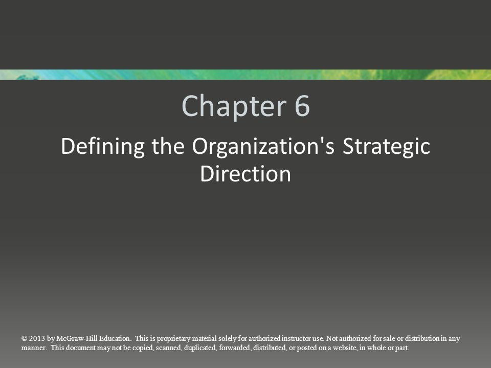 Defining the Organization s Strategic Direction