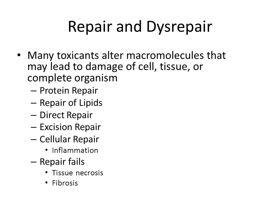 Repair and Dysrepair Many toxicants alter macromolecules that may lead to damage of cell, tissue, or complete organism.