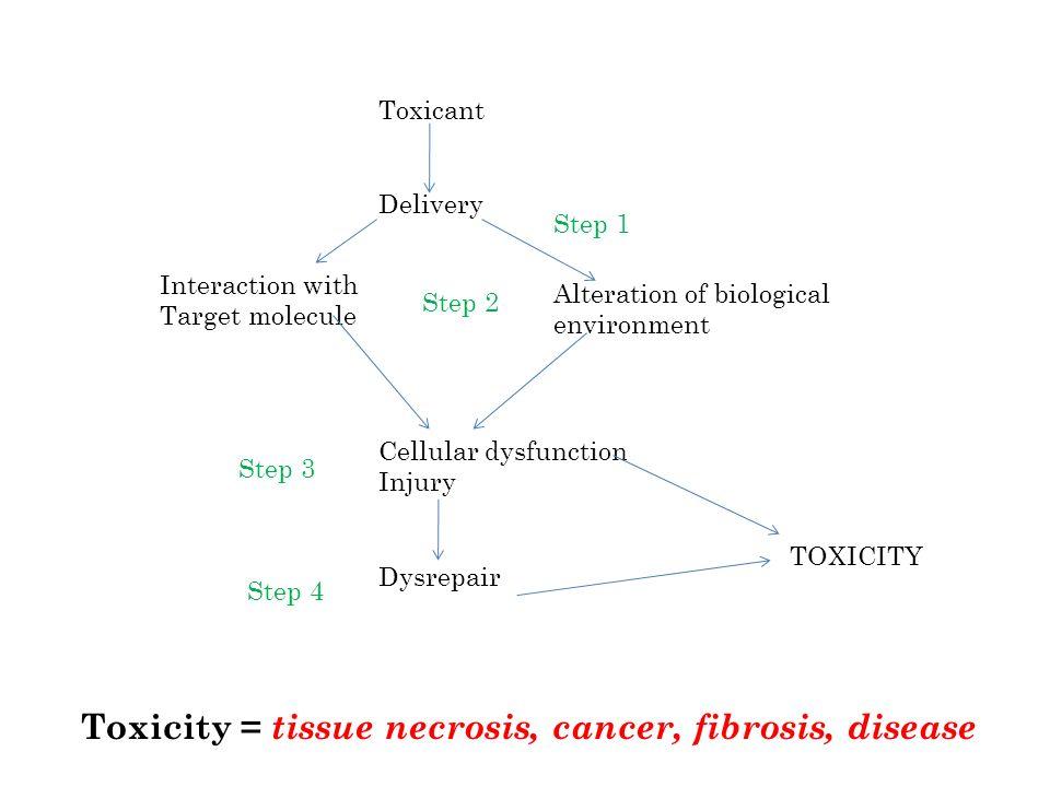 Toxicity = tissue necrosis, cancer, fibrosis, disease