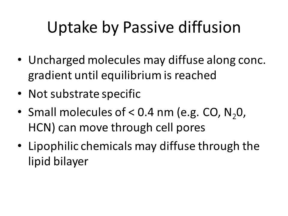 Uptake by Passive diffusion