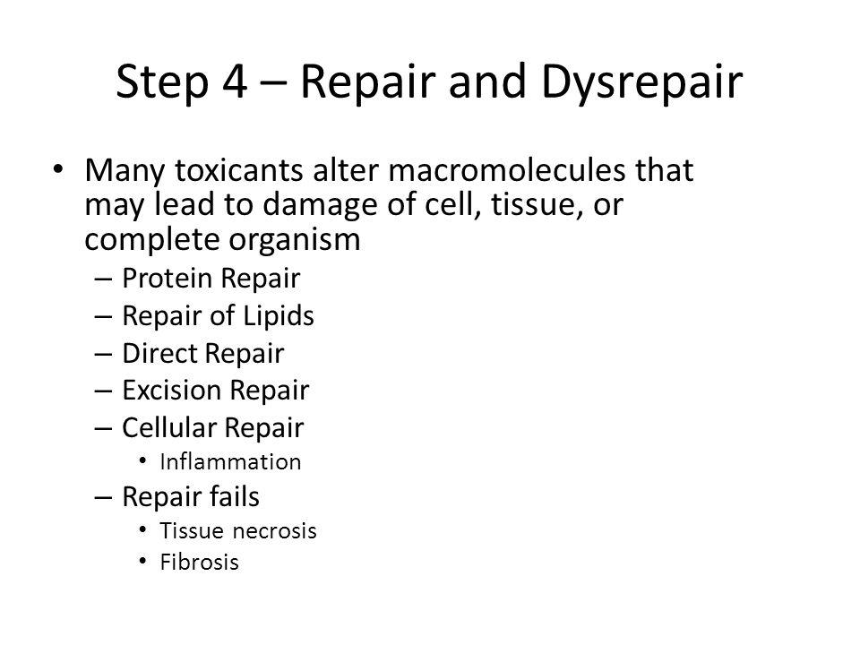 Step 4 – Repair and Dysrepair