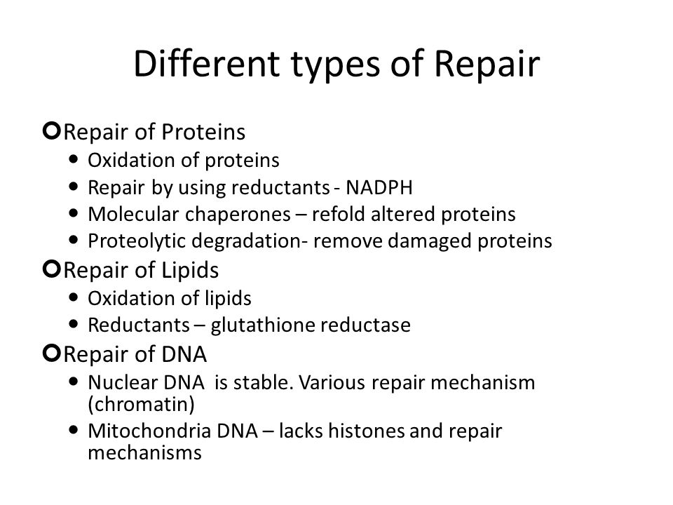 Different types of Repair