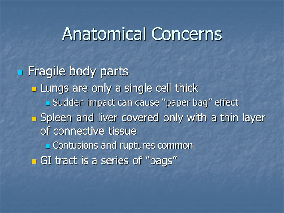 Anatomical Concerns Fragile body parts