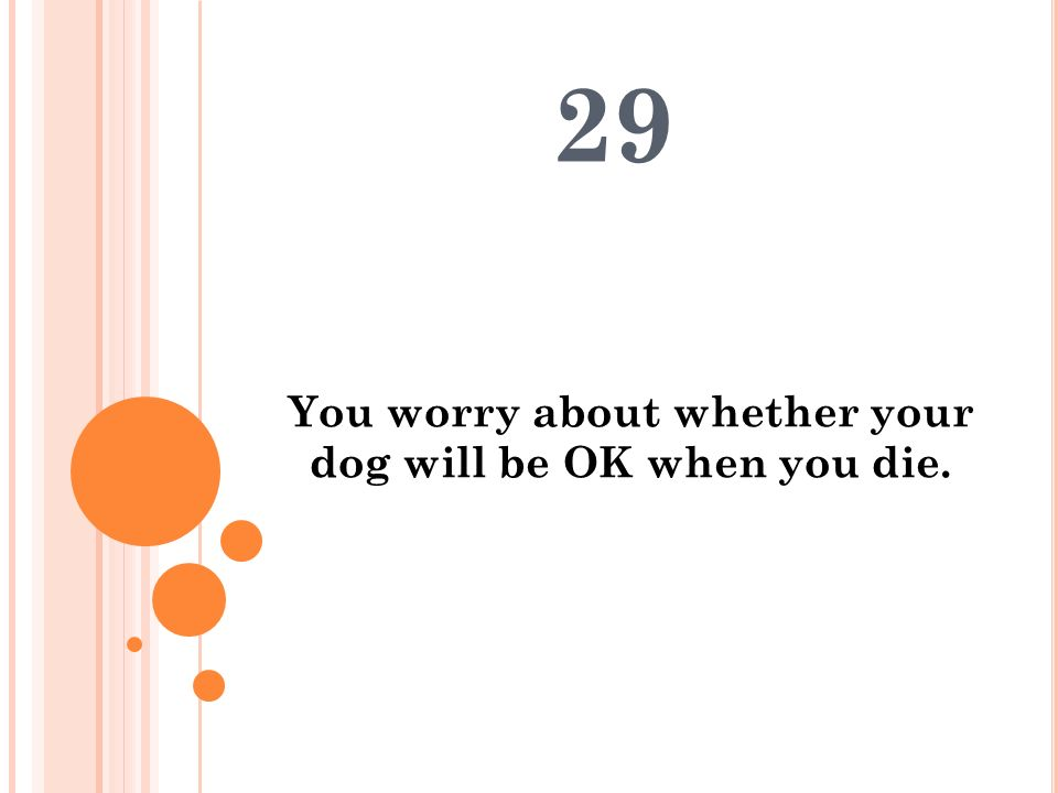 You worry about whether your dog will be OK when you die.