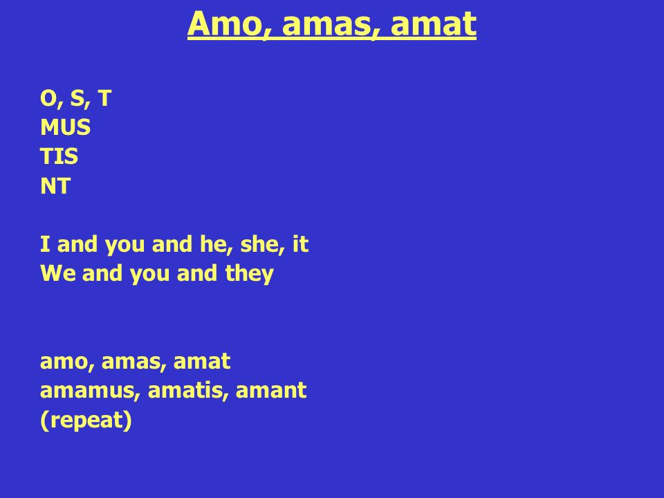 Amo, amas, amat O, S, T MUS TIS NT I and you and he, she, it