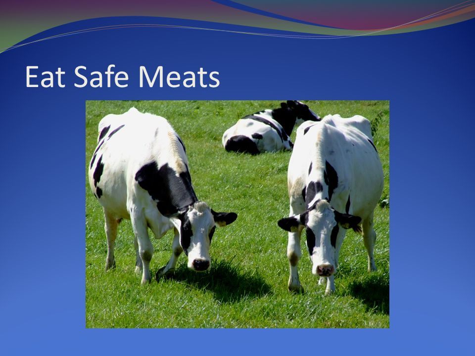 Eat Safe Meats