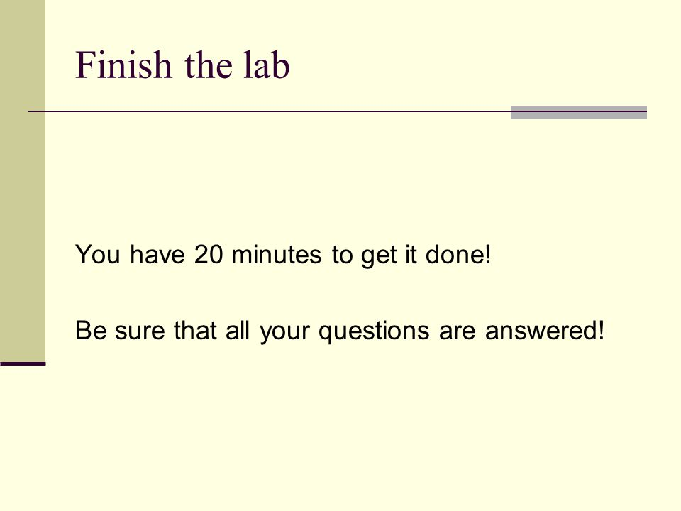 Finish the lab You have 20 minutes to get it done! Be sure that all your questions are answered!