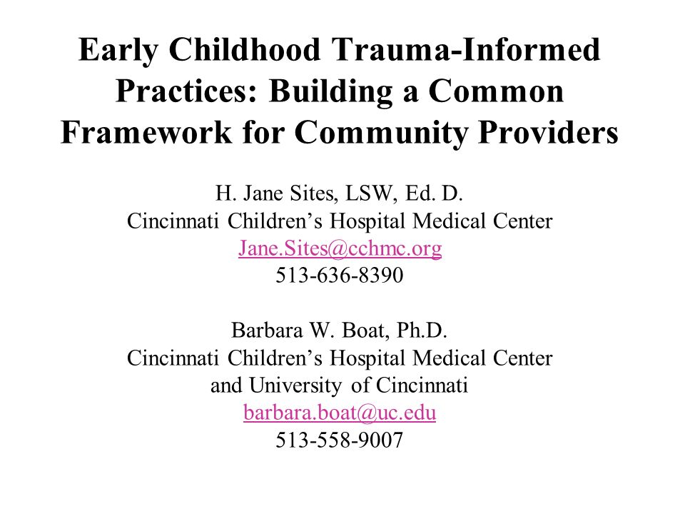Early Childhood Trauma-Informed Practices: Building a Common Framework for Community Providers H.