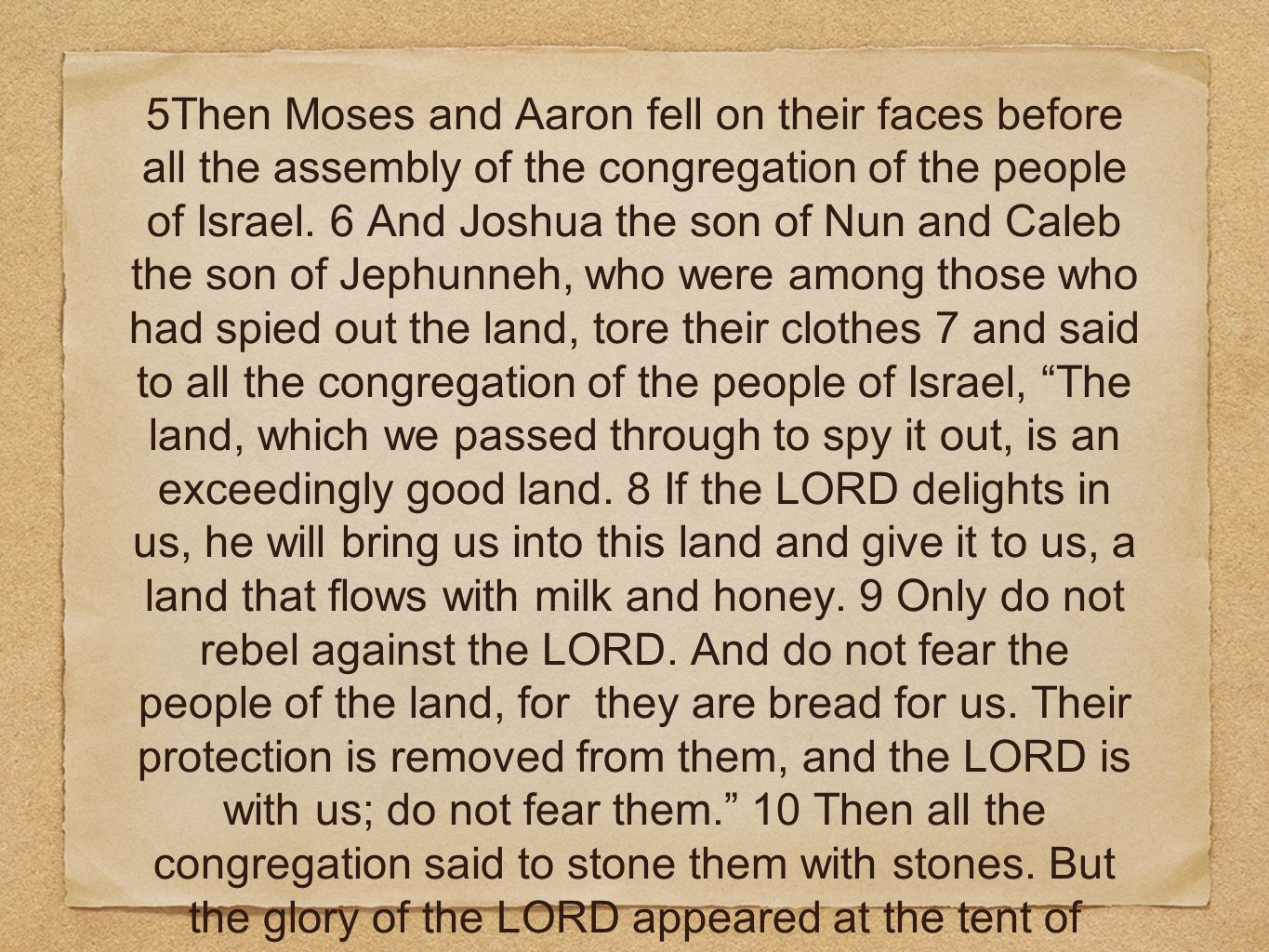 5Then Moses and Aaron fell on their faces before all the assembly of the congregation of the people of Israel.