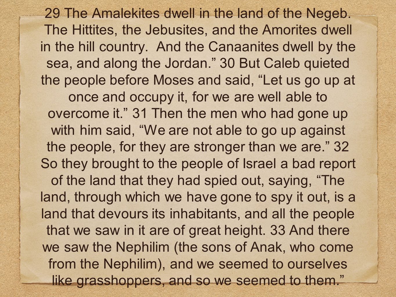 29 The Amalekites dwell in the land of the Negeb