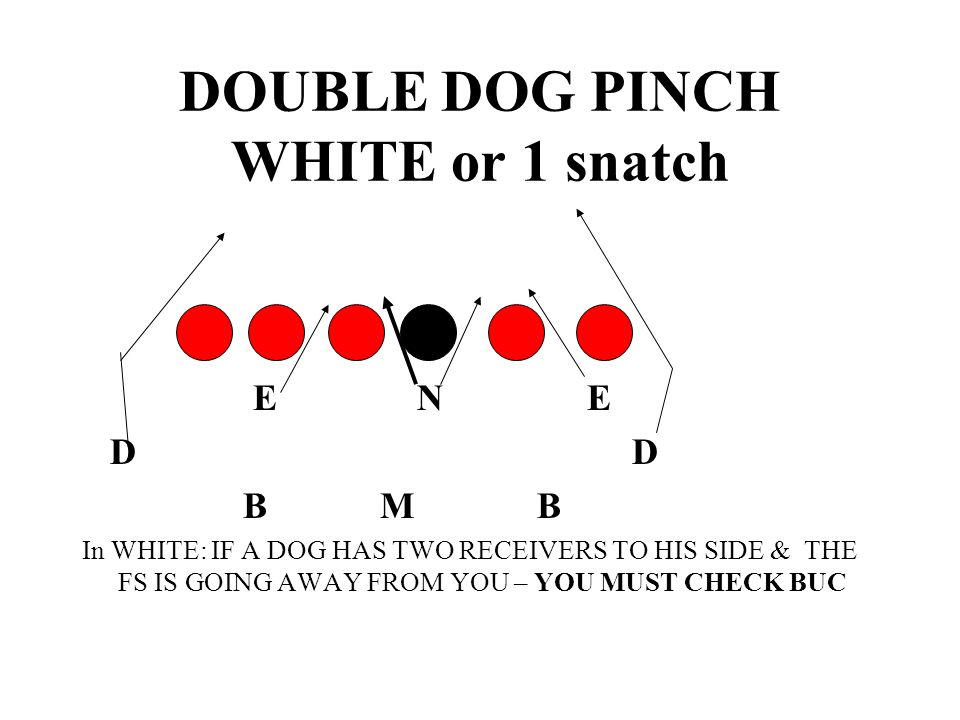 DOUBLE DOG PINCH WHITE or 1 snatch