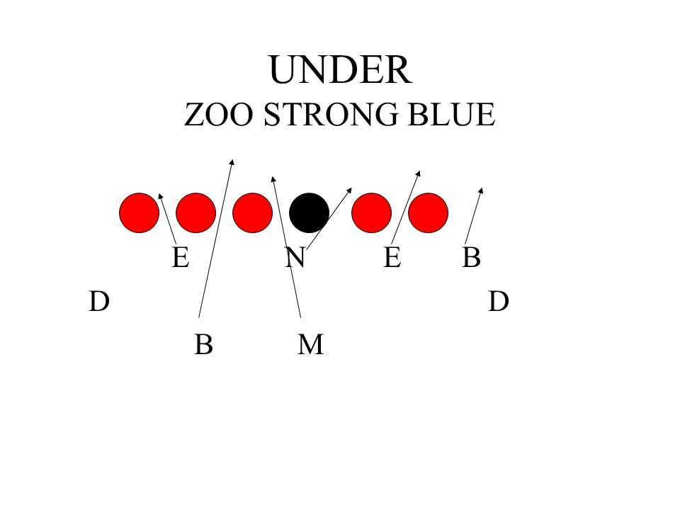 UNDER ZOO STRONG BLUE E N E B. D D.