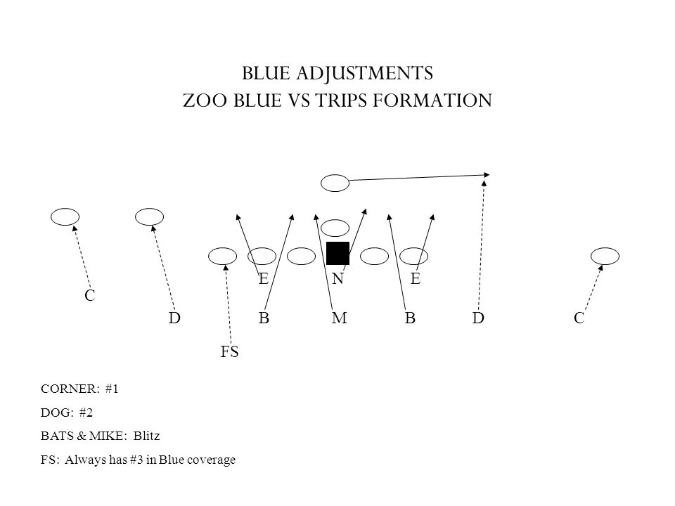 BLUE ADJUSTMENTS ZOO BLUE VS TRIPS FORMATION