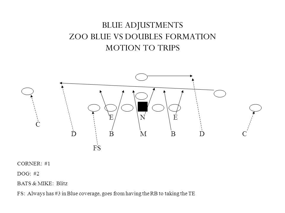 BLUE ADJUSTMENTS ZOO BLUE VS DOUBLES FORMATION MOTION TO TRIPS